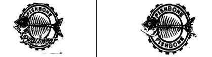 marca registrada fishbone